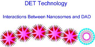 Interactions Between Nanosomes and DAD